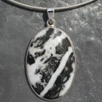 Zebra Jasper 2