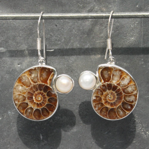 Ammonite with Pearl Earrings