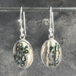 Ocean jasper earrings