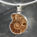 Ammonite Pendant Small