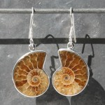 Ammonite Earring L